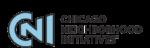 Chicago Neighborhood Initiatives