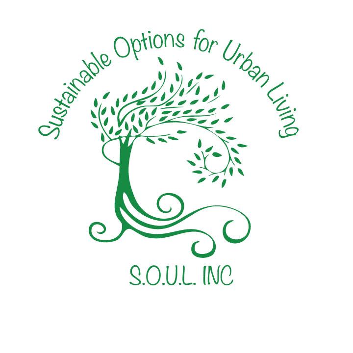 soul-program